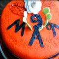 tort-na-9-maya-mini