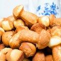 Печенье в форме на газу: грибочки