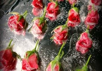 засахареные розы