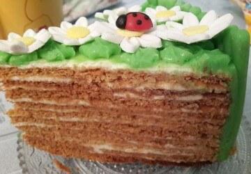 13 торт медовик с ромашками в разрезе